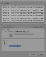 Batch Import dialog in the Avid Media Composer.