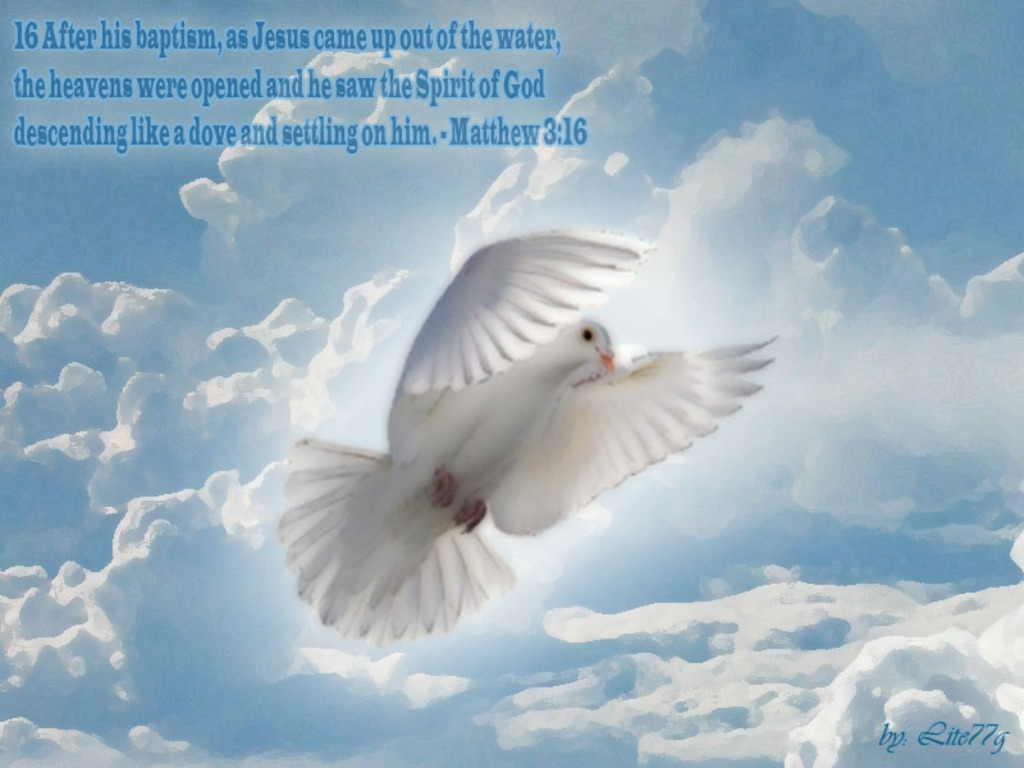 Related pictures releasing the doves christian wallpaper download