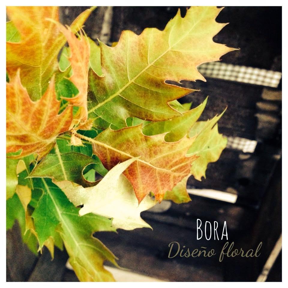 decoración otoño Le Cordon Bleu