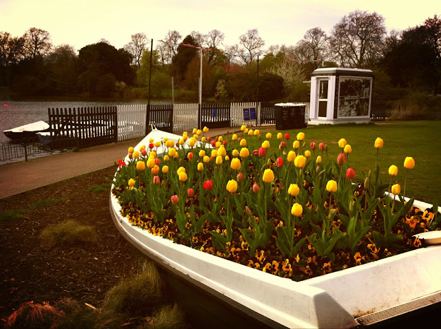 Victoria+Park+Tower+Hamlets+London+flowers+in+a+boat