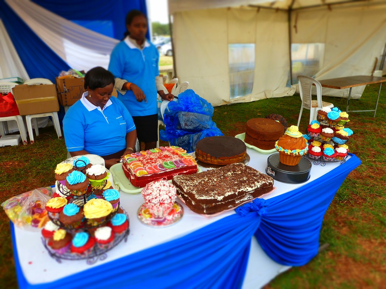 Cake Art Festival Nairobi : Cookswell Energy Saving Jikos and Charcoal Ovens ...