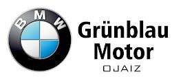 BMW Grümblau Motor