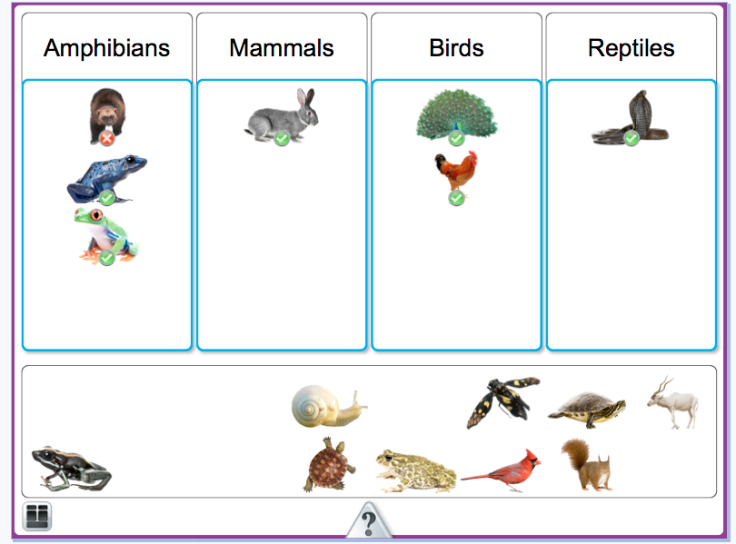 coloring pages animal classification activities - photo#27