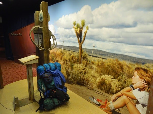 Wild movie prop display