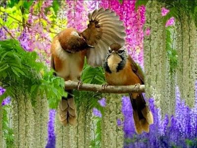 Bendita seja a Mãe Natureza