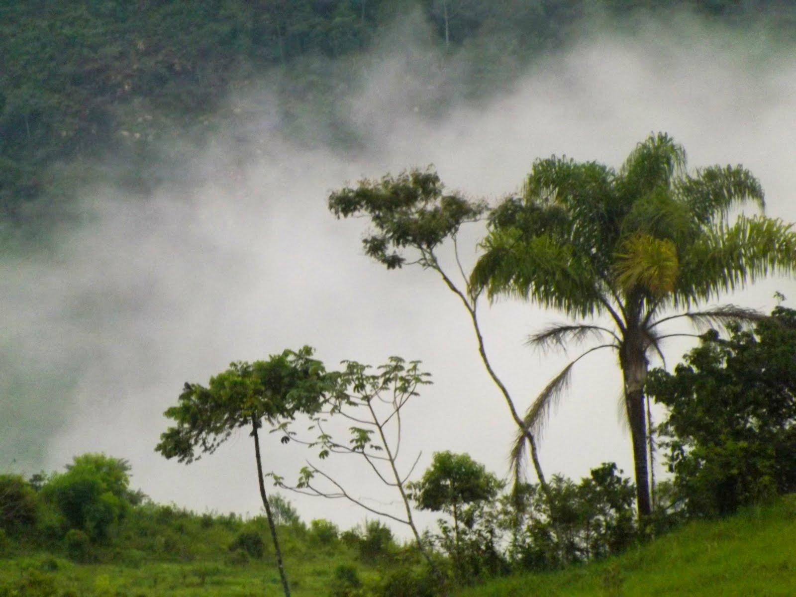 Belezas do Serra Verde