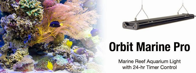 New From Current USA Orbit Marine PRO LED Fixtures