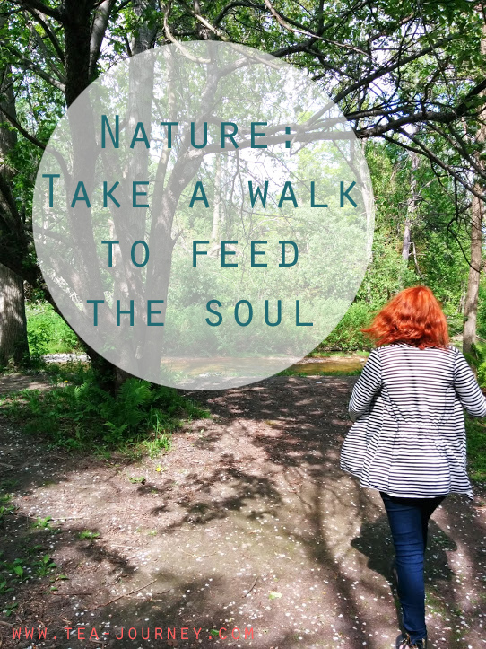 Nature: Take a walk to feed the soul fresh air get away from everything exercise