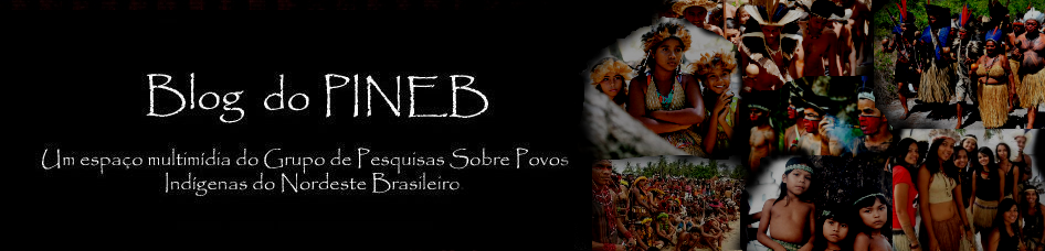 BLOG DO PINEB
