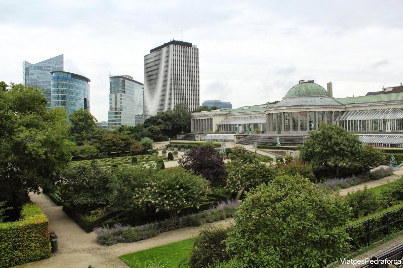 Jardi Botanic Brussel.les Belgica