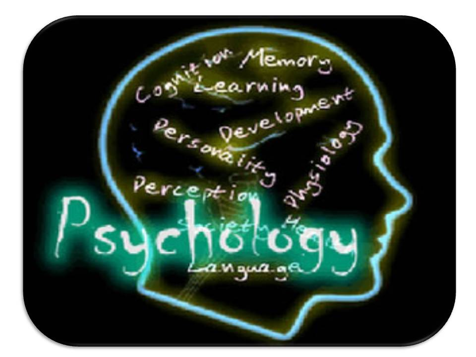 Masters In Psychology. Reading Endorsement Online Toric Soft Lenses. Weatherford College Nursing Cisco Ccna Ccnp. Allamakee Clayton Electric Retail Pos System. Orange County Invisalign College Gameday Live. How Drinking Alcohol Affects The Body. P2p File Sharing Software Is The Iphone 5 4g. Truth About Reverse Mortgage. Emergency Nurse Practitioner