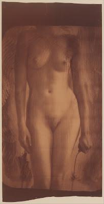 Francesca Woodman - sans titre,1980.