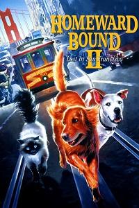Watch Homeward Bound II: Lost in San Francisco Online Free in HD