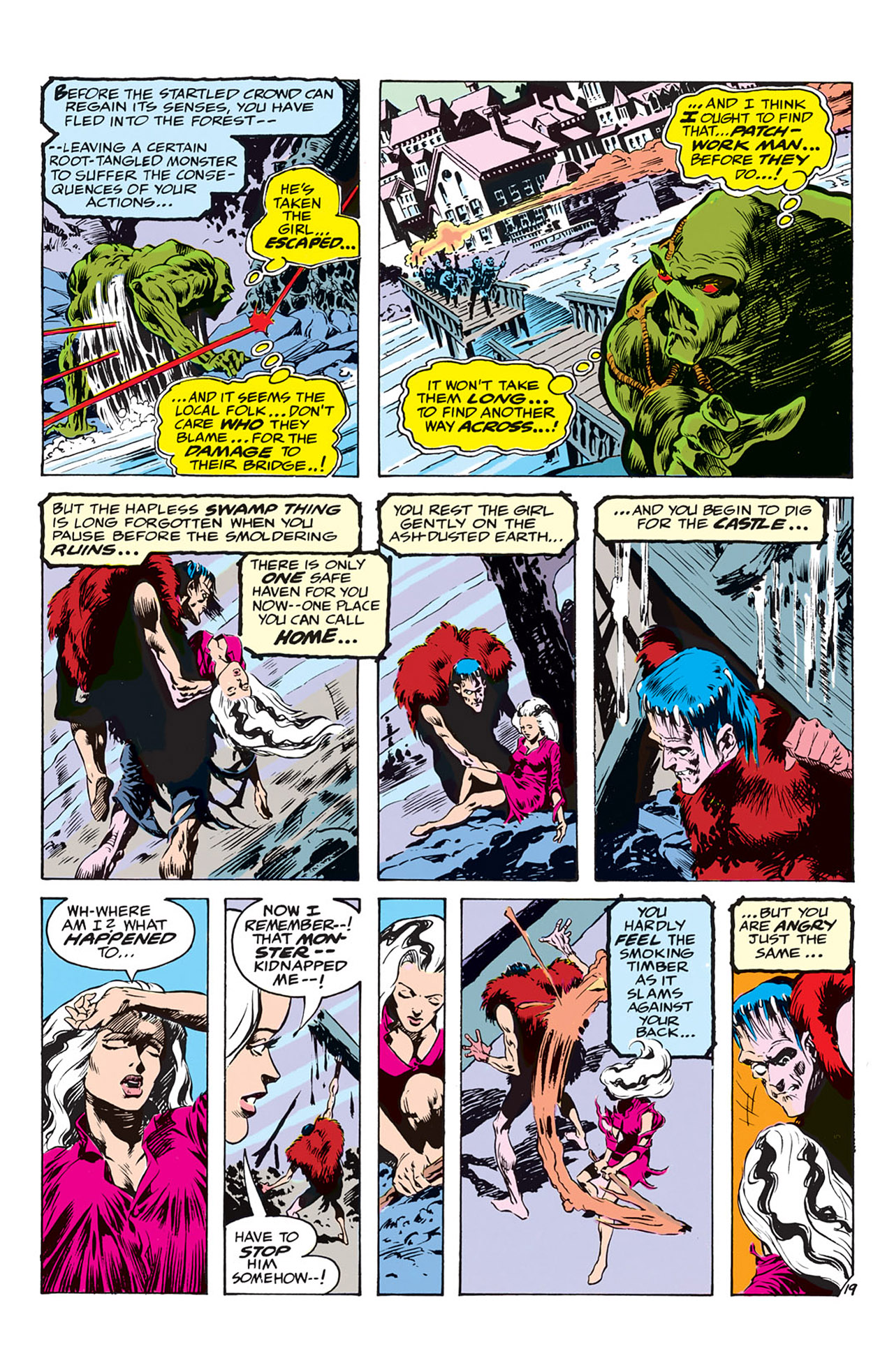 Swamp Thing (1972) Issue #3 #3 - English 20