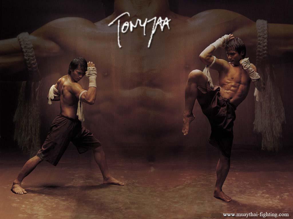 http://2.bp.blogspot.com/-apccj9uUhs8/TdRJhxHIQEI/AAAAAAAAAQI/VNYxU2Fopgg/s1600/Muay-Thai-Wallpapers-Tony-Jaa-1.jpg