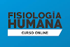 Fisiologia Humana - online