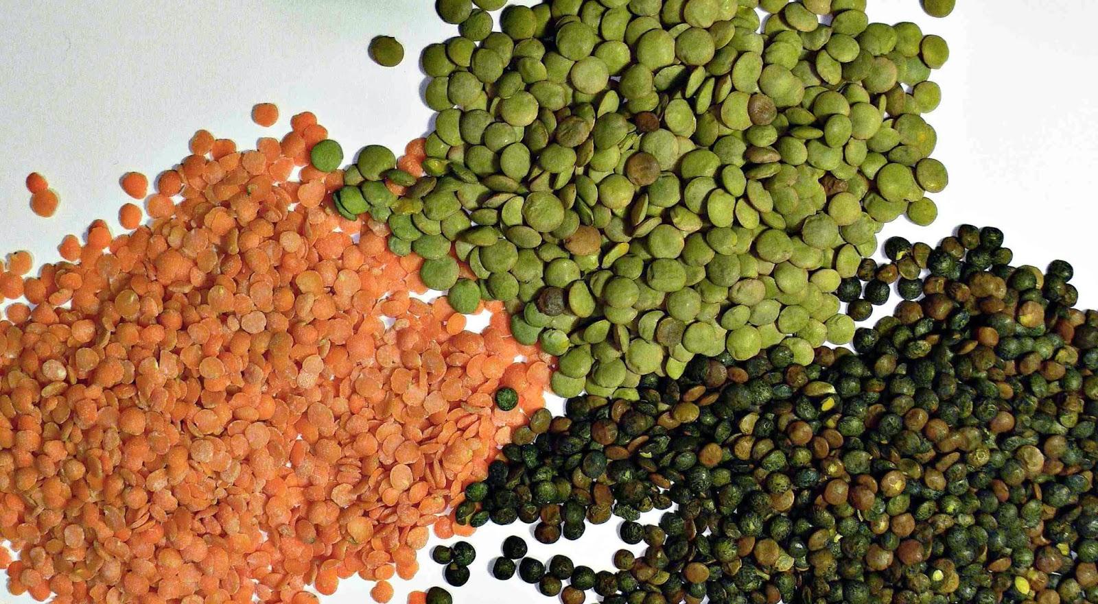 lentils-3-main-varieties