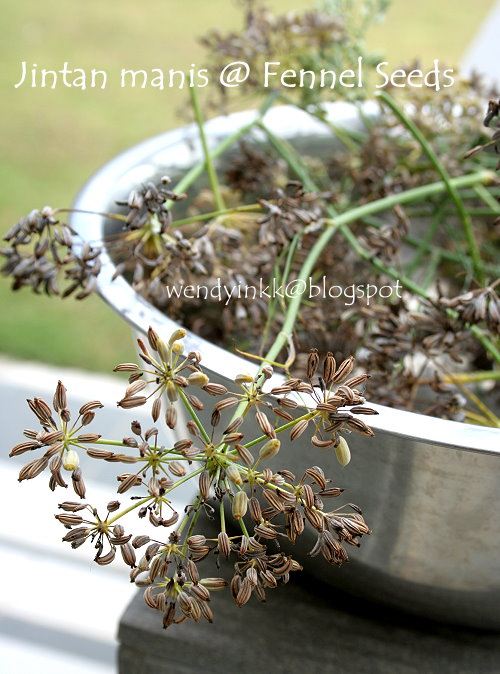 Fennel Seeds in Malay Fennel Seeds Were Used in