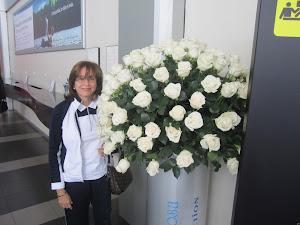 Rosas blancas del Ecuador