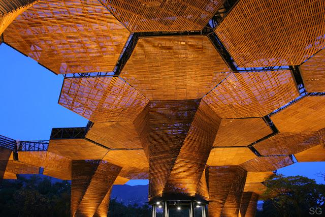 Orquideorama sombras de madera en un jard n bot nico for Architecture de jardin