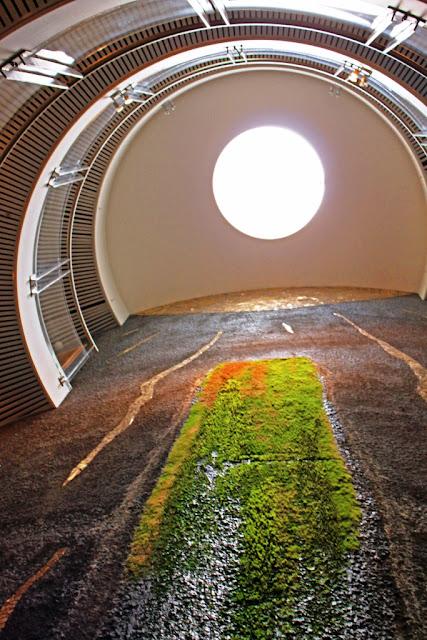 Jardín vertical de musgo Islandia