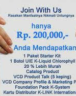 multi level marketing terbaru 2015