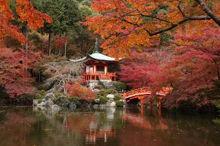 http://2.bp.blogspot.com/-aqDcs1dwDfA/ULDgfxIAObI/AAAAAAAAMzo/XZpk3lUaa8o/s320/Autm+Japan5.jpg