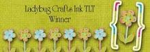 Winner (3/11)