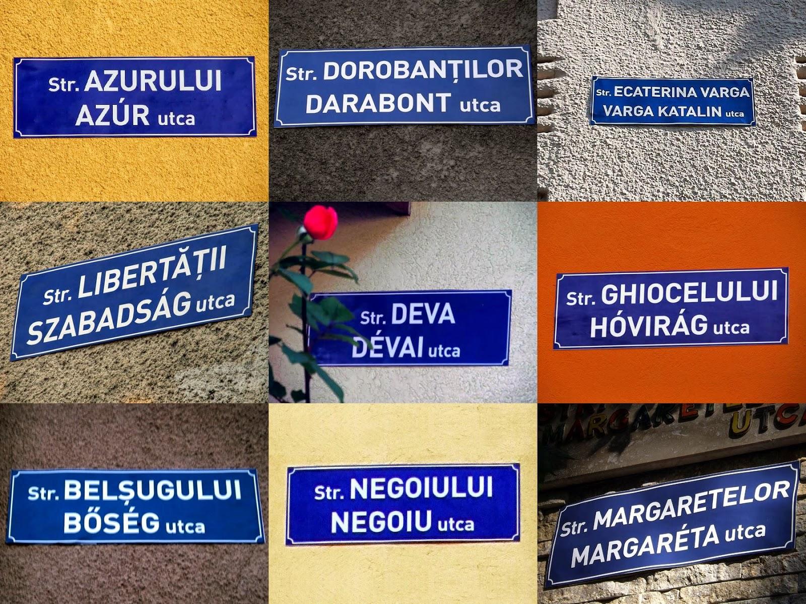 Románia, Marosvásárhely, anyanyelvhasználat, magyarság,