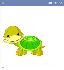 Turtle sticker for Facebook