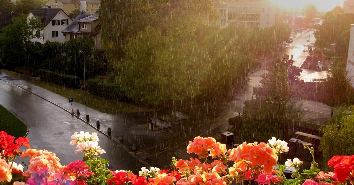 Rainy season hd wallpapers for an android phone top level beautiful wallpaper download free - Rainy hd wallpaper for pc ...