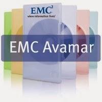 Differences between IBM Spectrum Protect (TSM) and EMC Avamar ...