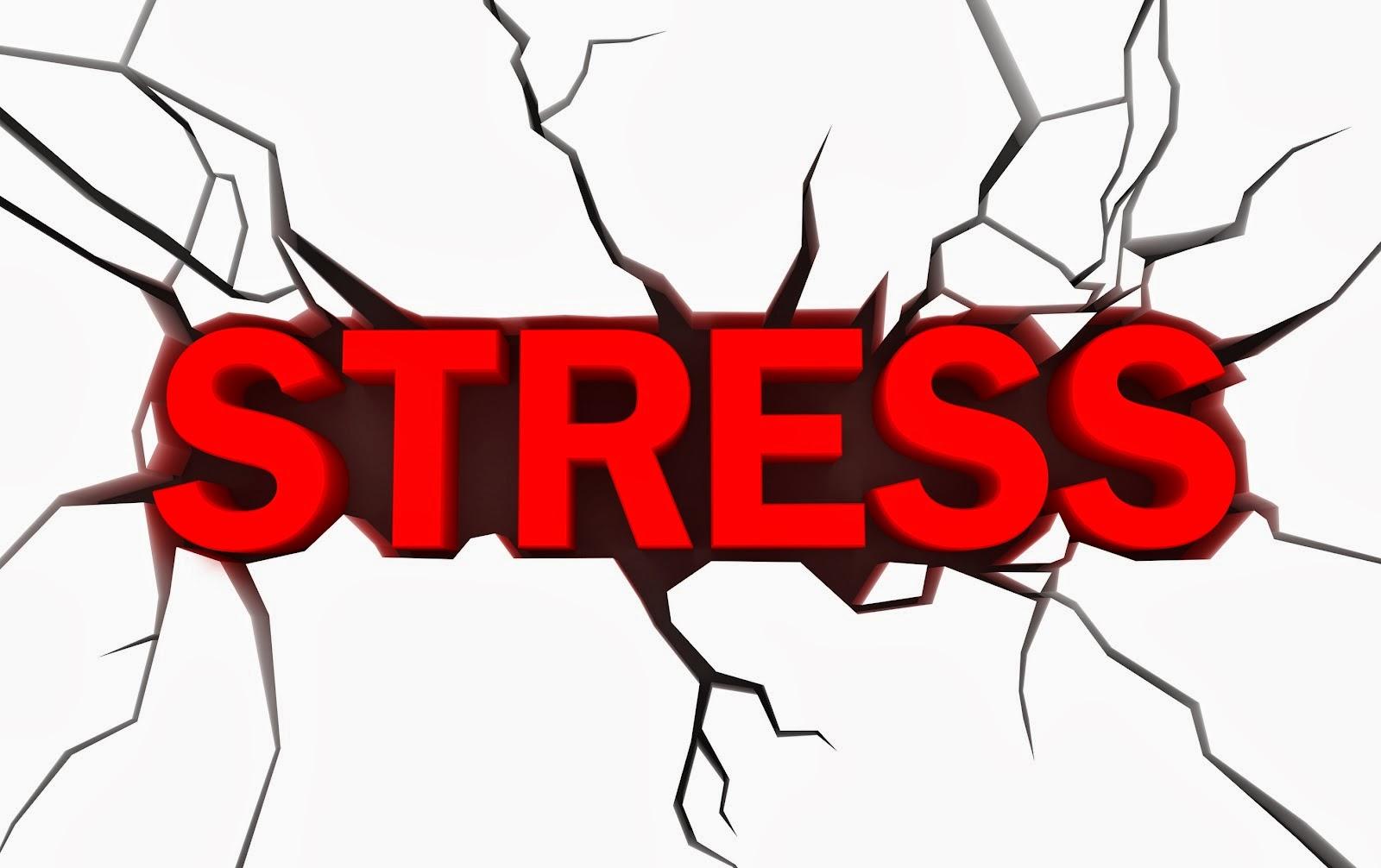 Pourquoi le stress nous emp che de perdre du poids holifit for Le stress