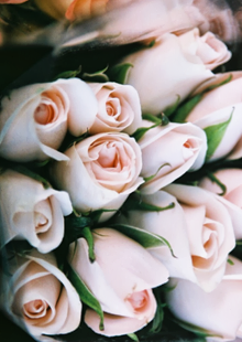 Pinterest Board { Flowers }