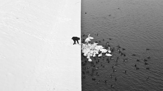 fotografía en blanco y negro de Marcin Ryczek