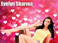 Evelyn Sharma HD Wallpapers