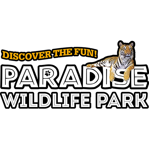 With so much going on, all year round, from seasonal events to visiting your favourite wild animal pals, a Paradise Wildlife Park discount code will let you save on the ultimate day out all year round.