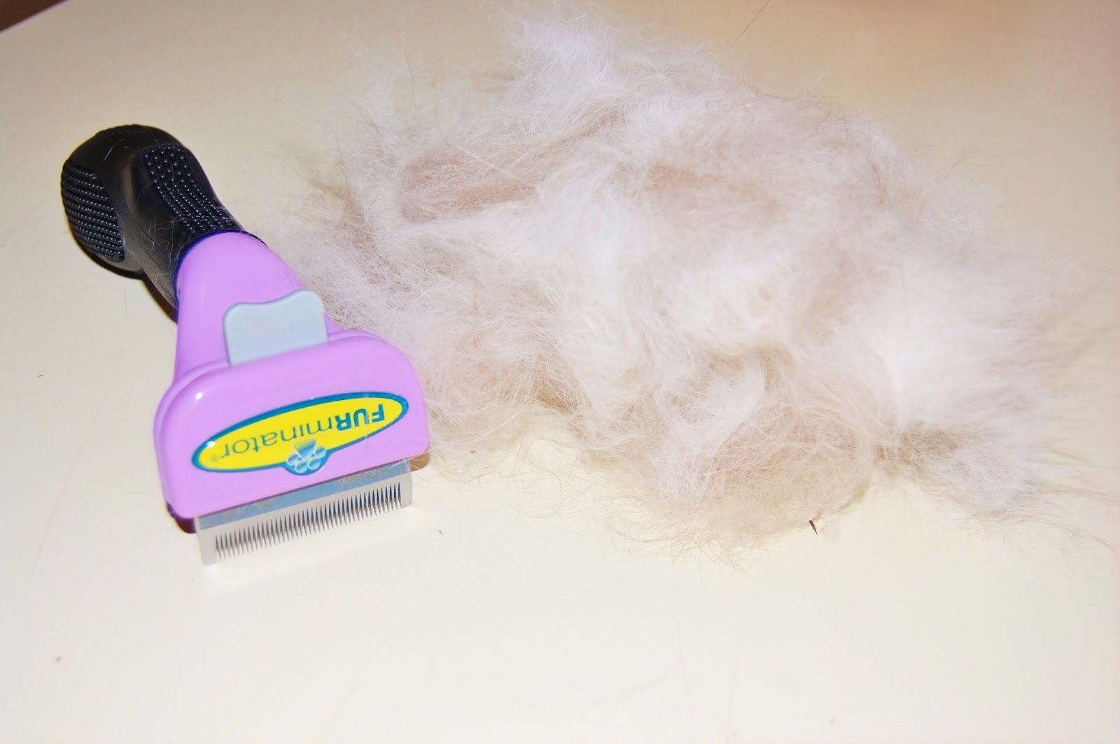 Furminator What S Difference Between Small And Large Cats