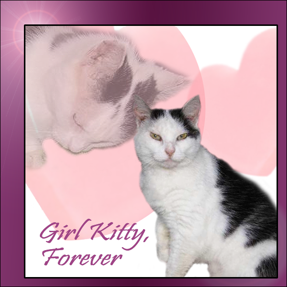RIP GIRL KITTY