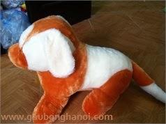 Chó Bông