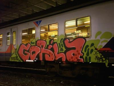 GORILA X-RAY NOACH
