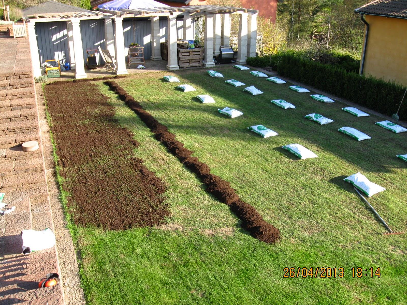 Vertikalskära gräsmattan
