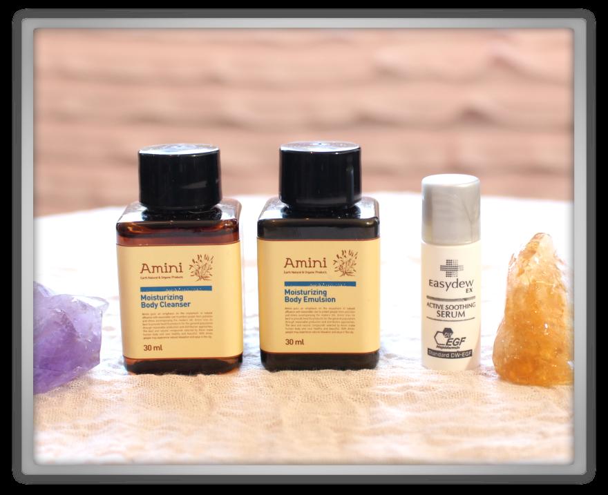 겟잇뷰티박스 by 미미박스 memebox beautybox Special #25 Traveler's Beauty Kit unboxing review easydew  serum amini body cleanser kit