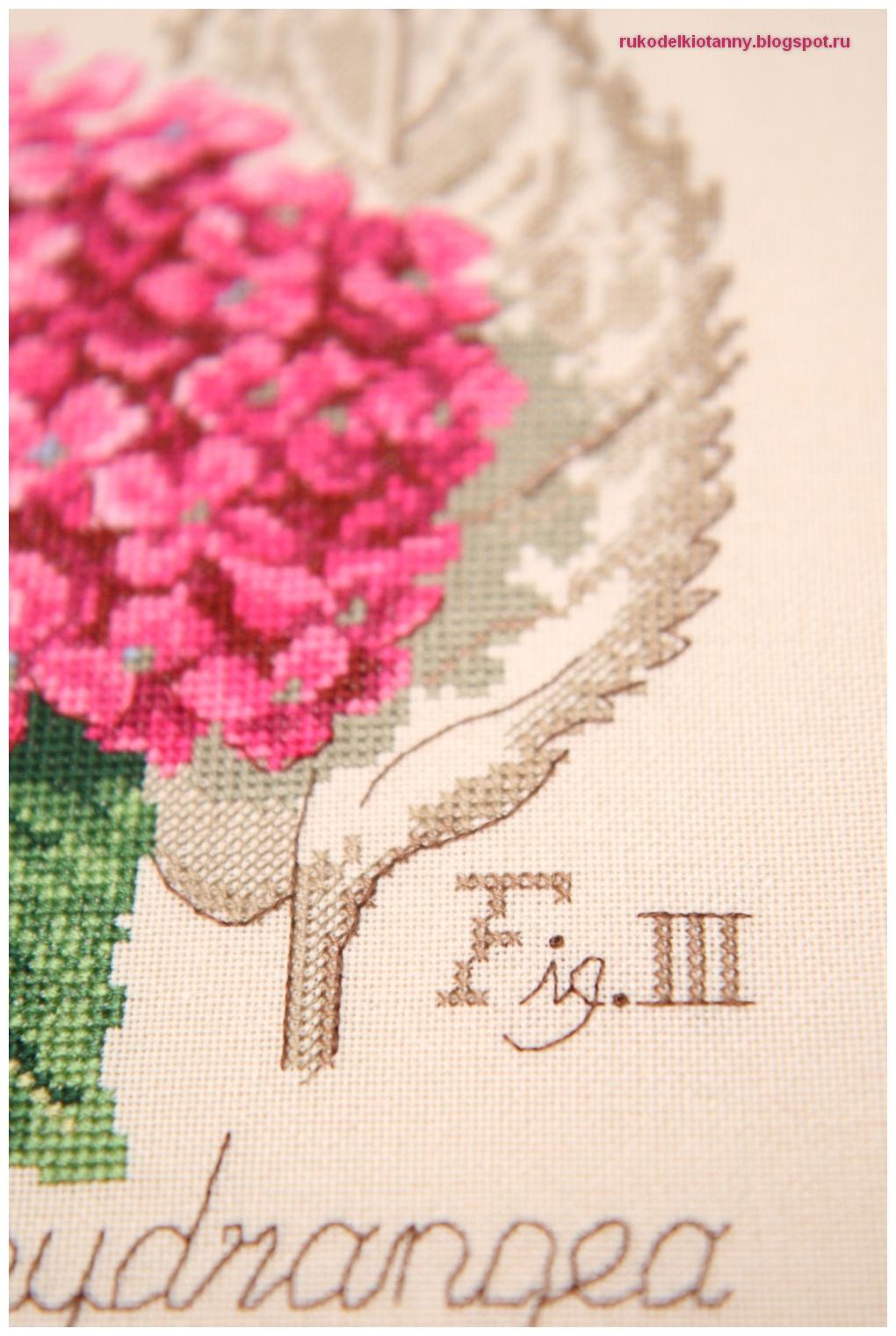 гортензия вышивка Veronique Enginger
