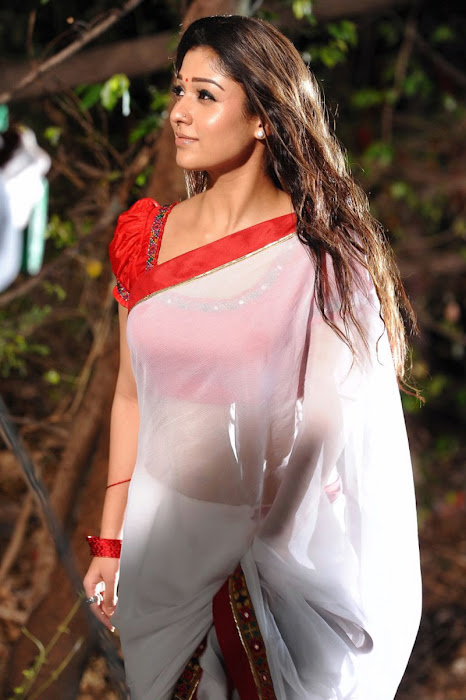 nayanthara in saree spicy actress pics