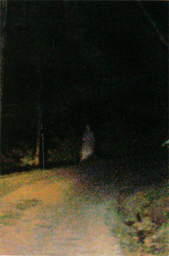 Real Ghost Photo: Ghost Soldier photographed at Devil's Den