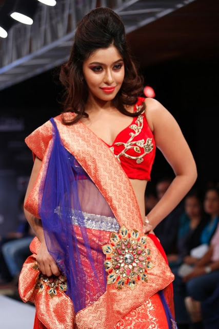 payal ghosh hot and spicy wallpapers