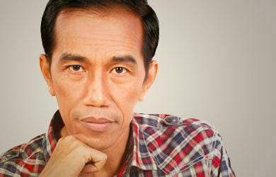 Jokowi, Presiden Terpilih 2014