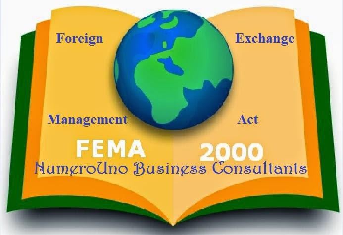 FEMA - NumeroUno Business Consultants