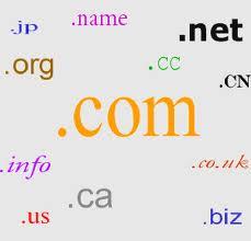 Berbagai Domain yang ada di Dunia